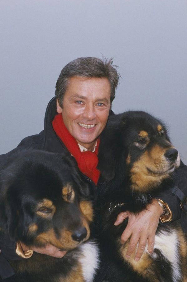 Ален Делон фото с собаками Alain Delon photo dogs