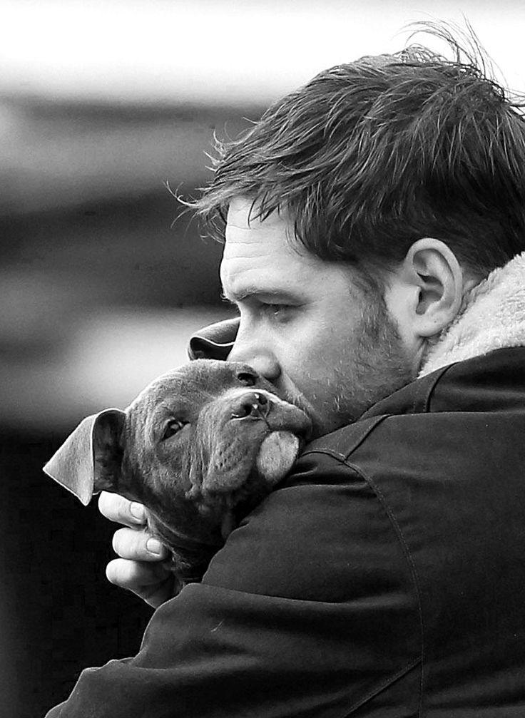 Том Харди фото собака Tom Hardy photo dog