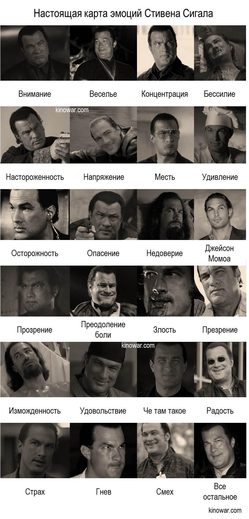 Реальная карта эмоций Стивена Сигала