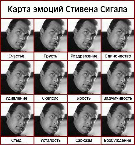 Карта эмоций Стивена Сигала