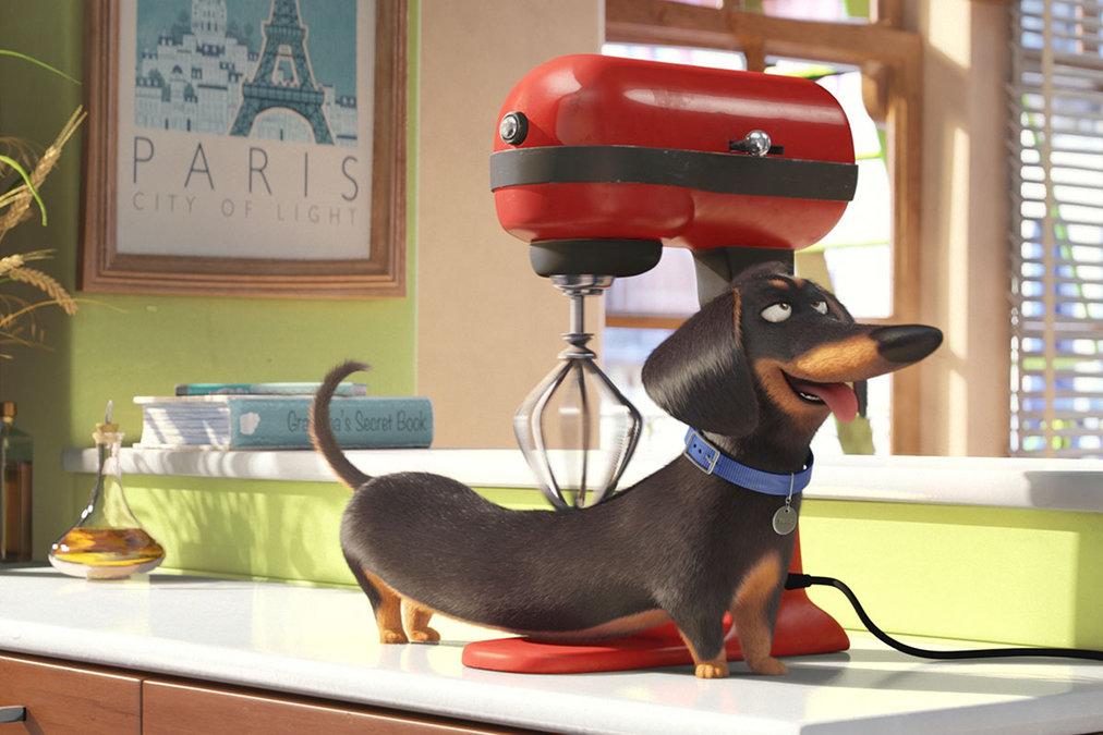 Тайная жизнь домашних животных (The Secret Life of Pets)