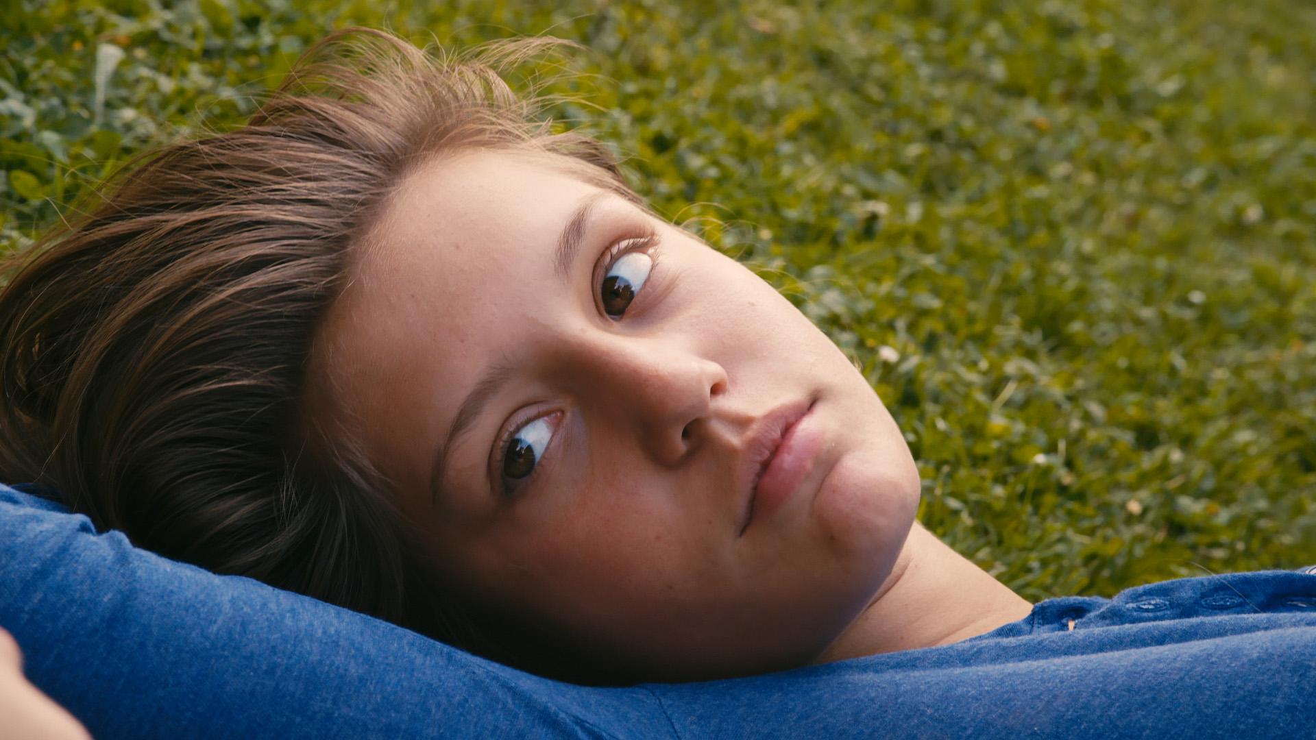Жизнь Адель (La vie d'Adèle) отзывы о фильме