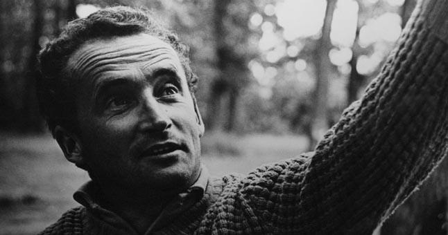 Витаутас Жалакявичюс литовское кино