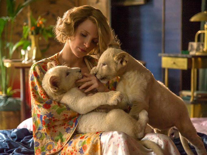 Трейлер: Жена смотрителя зоопарка (The Zookeeper's Wife)