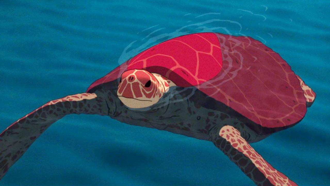 красная черепаха кадр 1