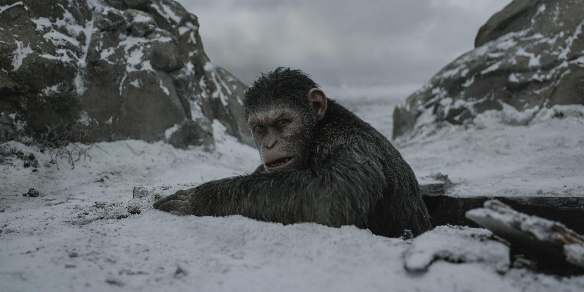 Война за планету обезьян (Планета обезьян: Война / War for the Planet of the Apes)