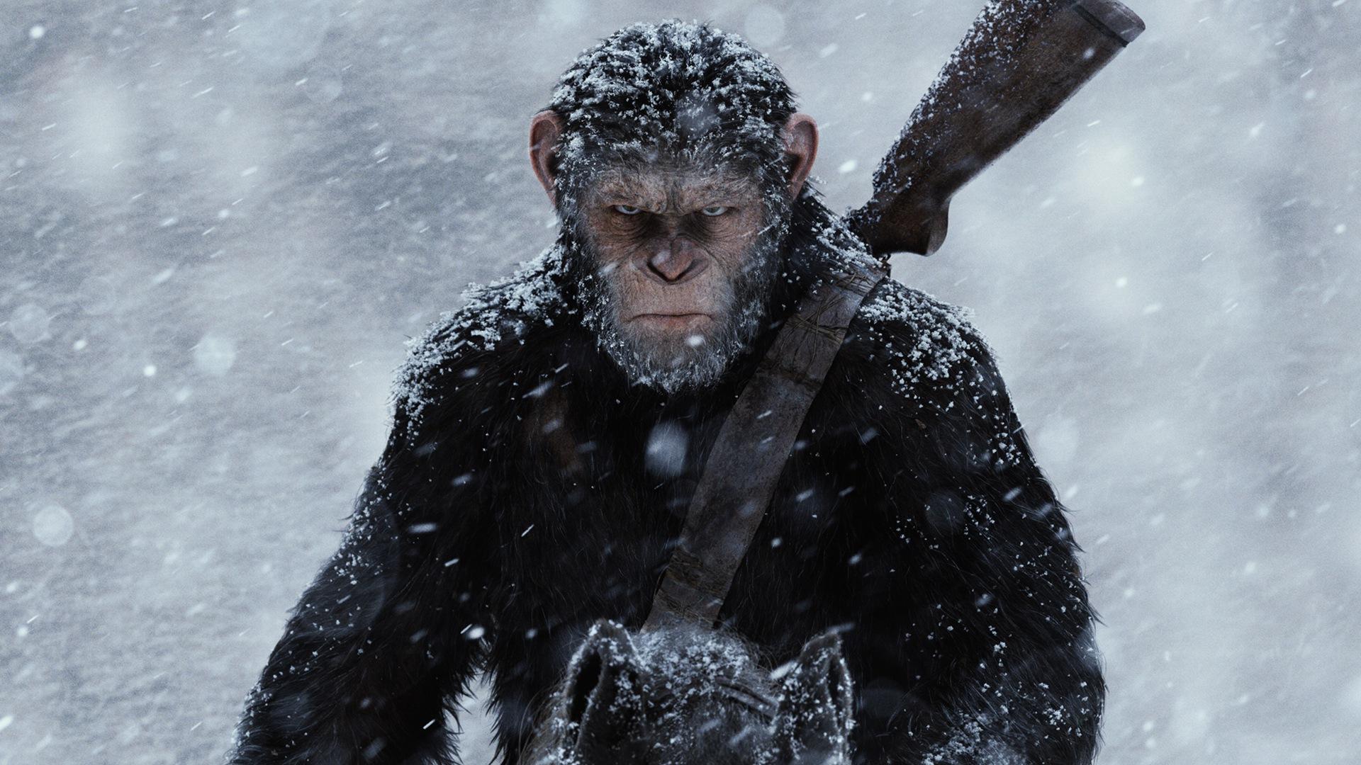 война за планету обезьян кадр 1
