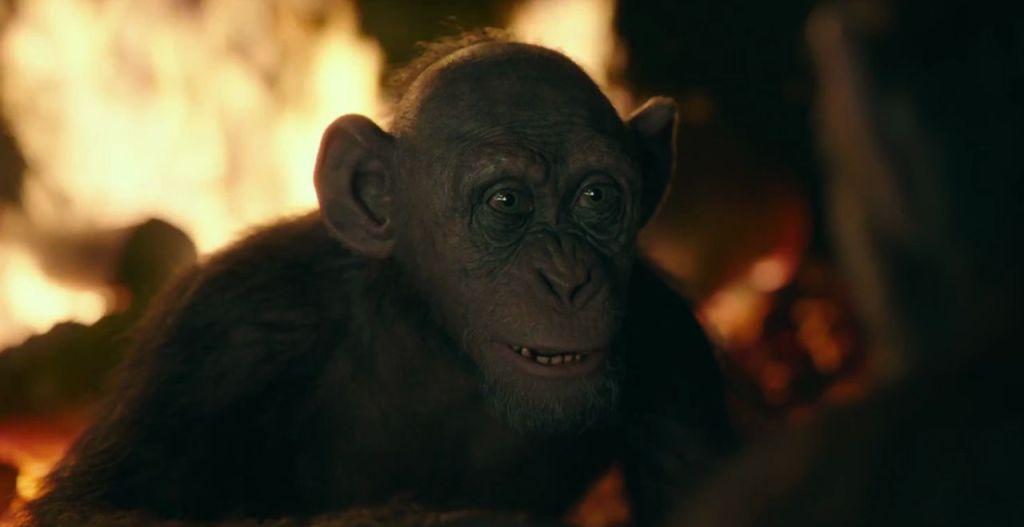 война за планету обезьян кадр 2