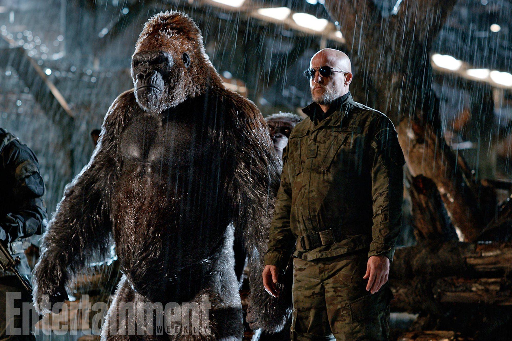 война за планету обезьян кадр 4