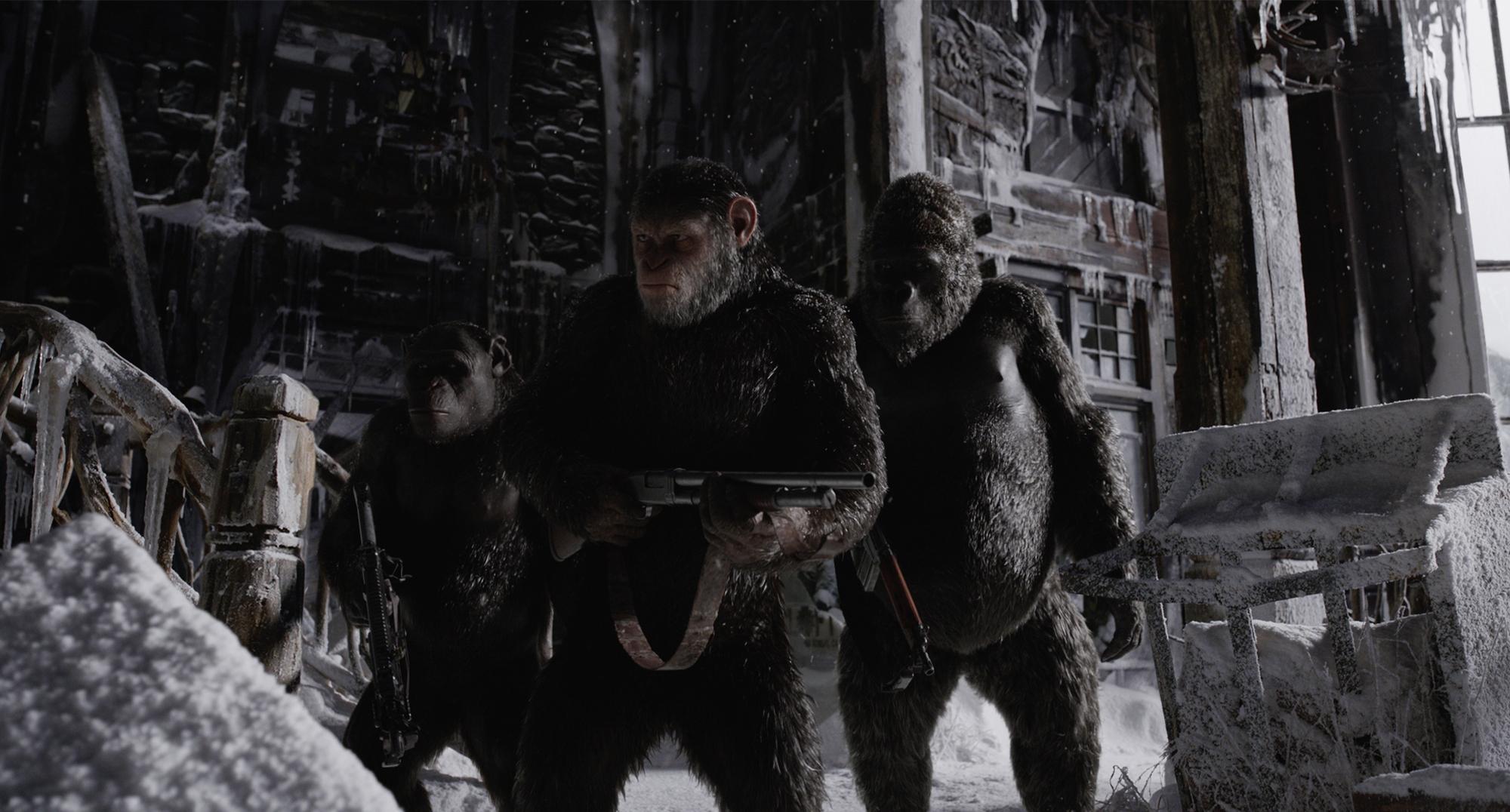 война за планету обезьян кадр 7