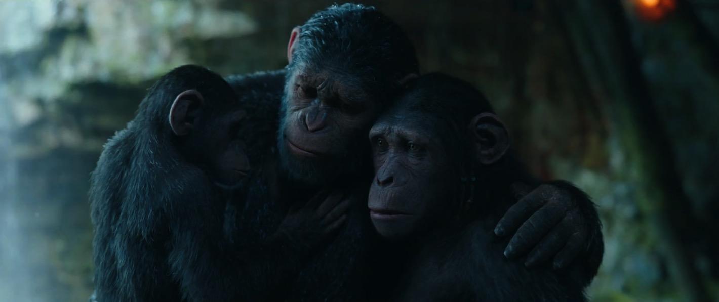 война за планету обезьян кадр 8