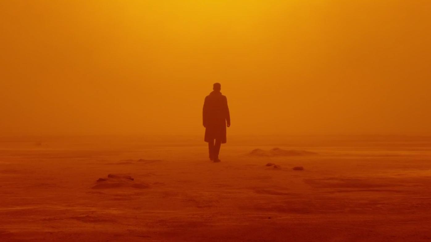 бегущий по лезвию 2049 кадр 10