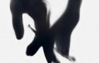 """Фільм """"5 терапія"""": дата виходу, трейлер і постер"""